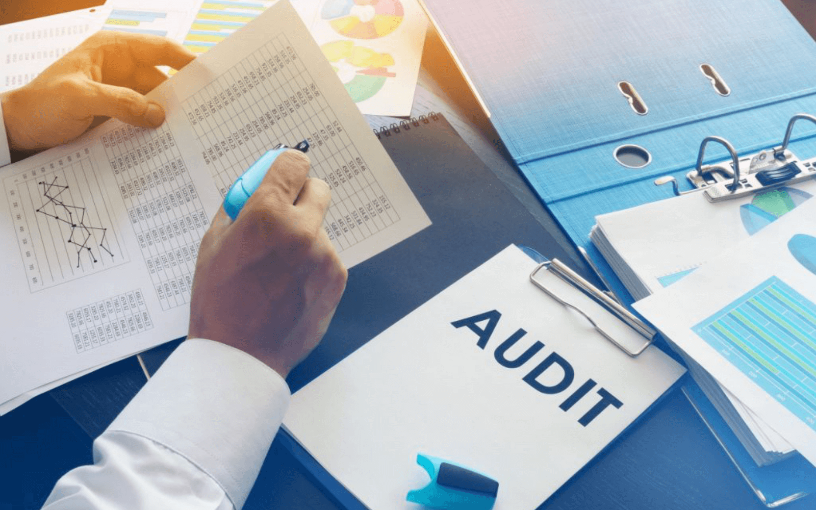 audit-and-review-nishant-s-mehta